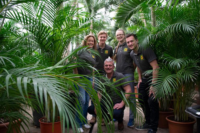 Vi älskar grön inredning och växter!
