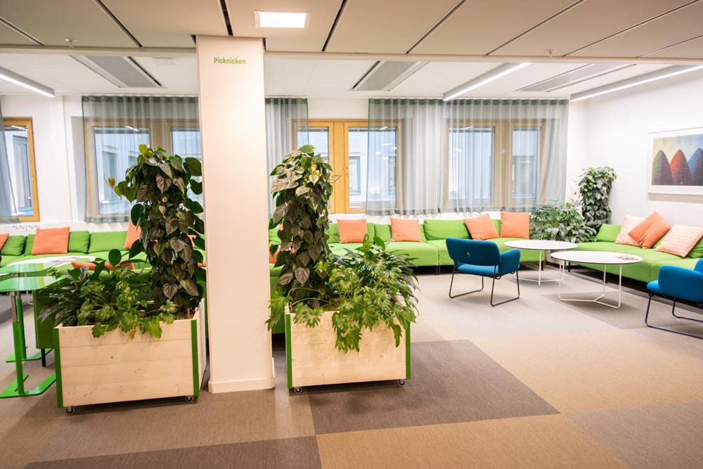 Arkitekter och växtinredning
