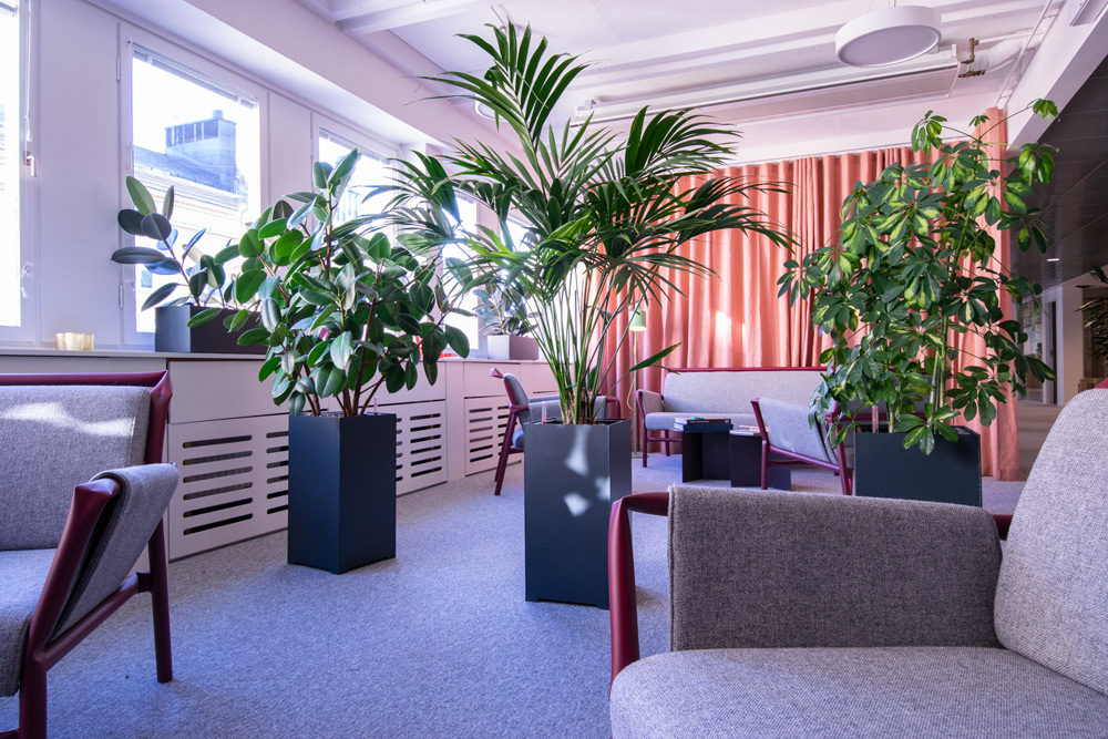 Experter på växtinredning och företagsväxter