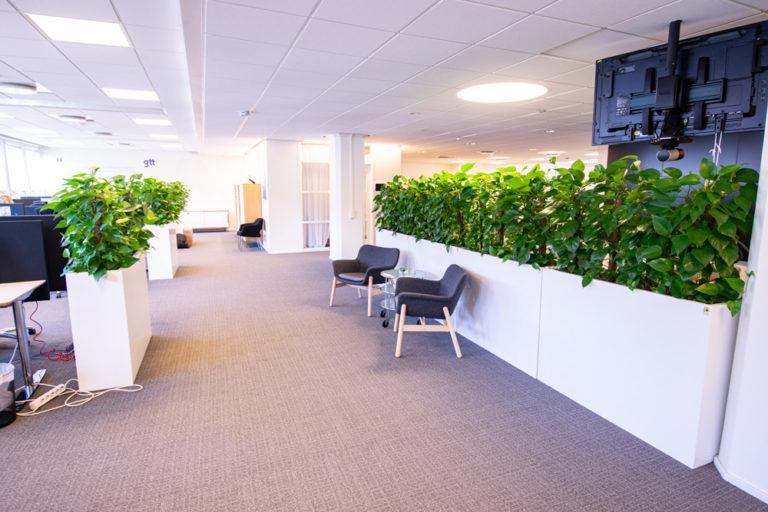 Växtinredning på kontoret