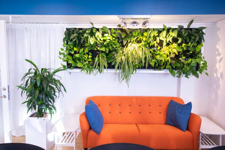 Köp växttavlor till företaget