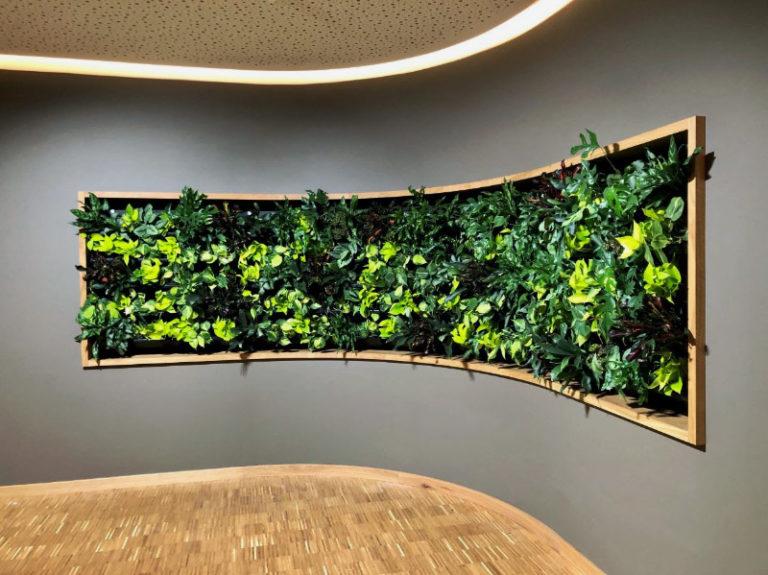 Växttavla med levande växter