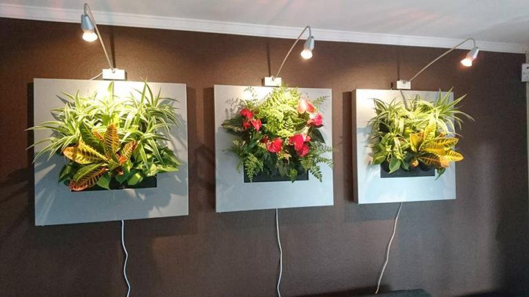 Växtbelysning till växttavlor