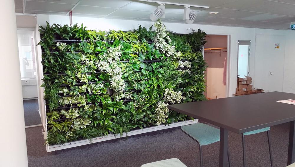 Hyr växtväggar till kontoret