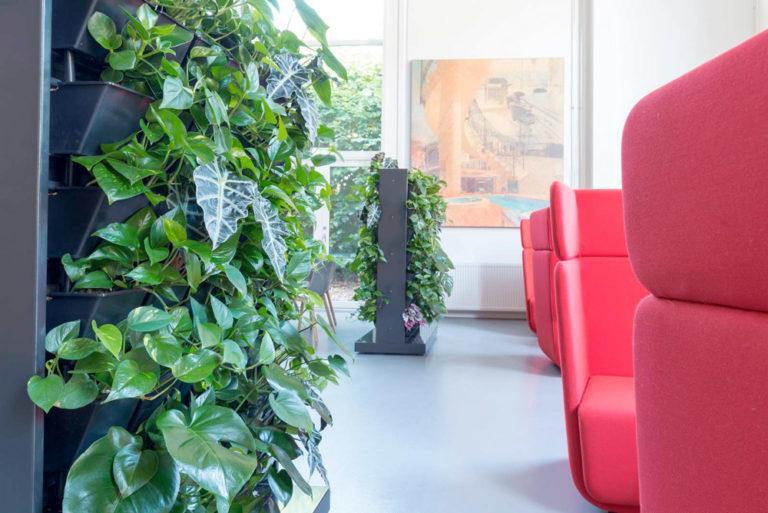 Använd växtskärmar som rumsavdelare