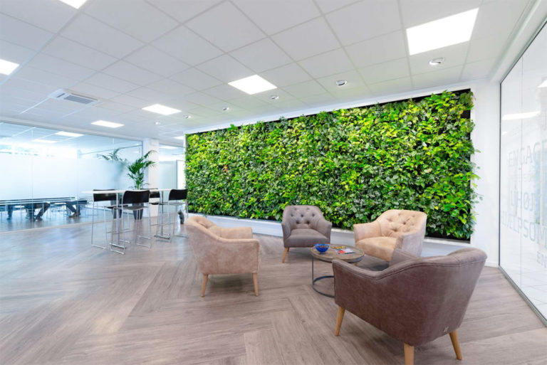 Växtväggar till kontoret