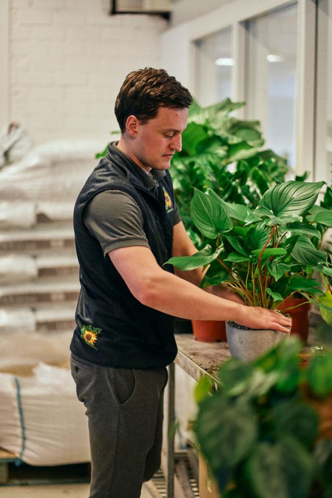 Inspiration till en grönare arbetsplats
